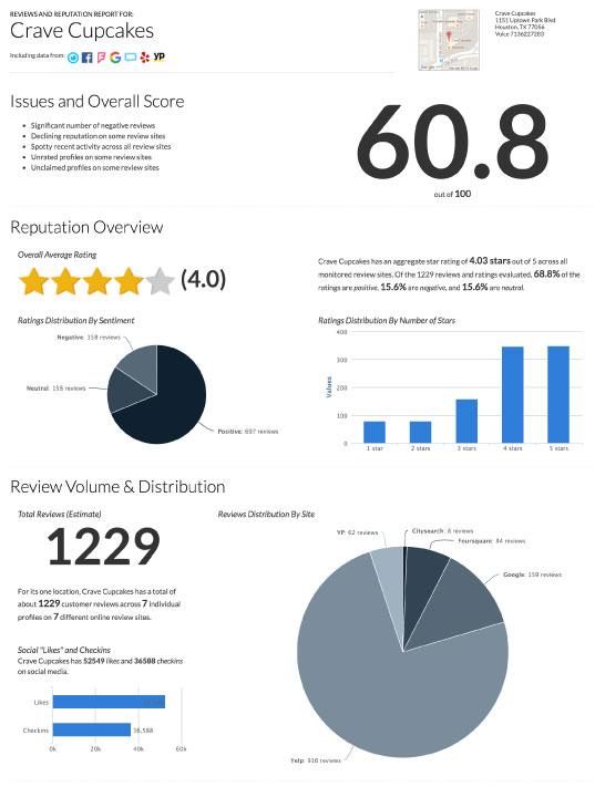 Online reputation management report screen grab